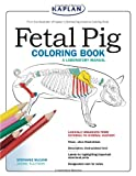 Fetal Pig Coloring Book: A Laboratory Manual (1419594524) by Mccann, Stephanie