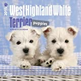 West Highland White Terrier Puppies 2015 Calendar