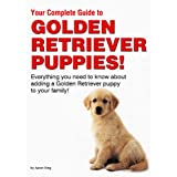 Your Complete Guide to Golden Retriever Puppies! ~ Aaron King