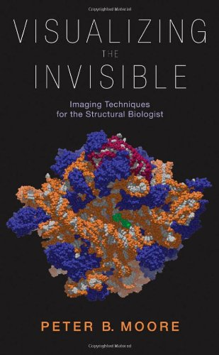 Visualizing The Invisible: Imaging Techniques For The Structural Biologist