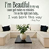 Lady Gaga Song Lyric -Wall Transfer / Large Vinyl Decor / Stylish Quote DAQ38