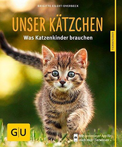 Unser-Ktzchen-Was-Katzenkinder-brauchen