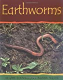 Earthworms (Minibeasts)