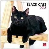 Black Cats 2013 Calendar
