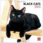 Black Cats 2013 Square 12X12 Wall Cal...