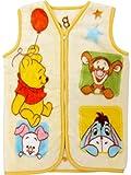 ベビー ニューマイヤースリーパー Disney Baby Pooh 《Premium 極上の肌触り》 〔40×56cm〕 No.NZ1877-CR