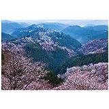 奈良県 吉野郡吉野町 世界遺産 吉野山
