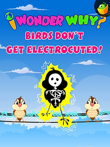 I Wonder Why? Birds Don't Get Electrocuted!