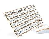 【Newiy Start】2.4GHz 無線 アルミ製 超薄型 コンパクト ワイヤレス キーボード&マウス (ゴールド+ホワイト)