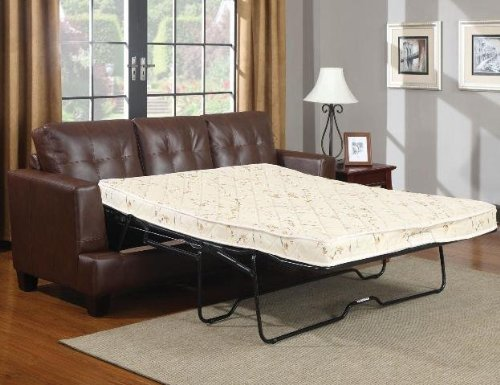 Coaster Home Furnishings Contemporary Sleeper, Dark Brown