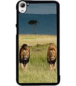 ColourCraft Lion and Lioness Design Back Case Cover for HTC DESIRE 826
