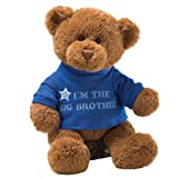 Gund 30cm 'I'm The Big Brother' Bear