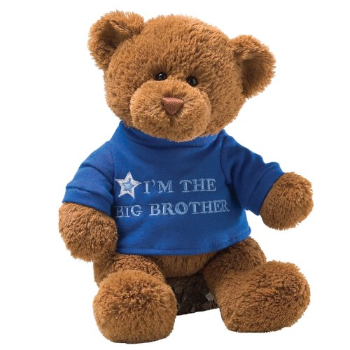 Gund T-Shirt Message Teddy Bear Stuffed Animal front-790365