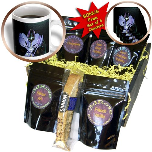 Cgb_50510_1 Jos Fauxtographee Conceptual - One Silver Spoon Standing In The Center Amongst A Glass Bowl Of Lavender Plastic Spoons - Coffee Gift Baskets - Coffee Gift Basket