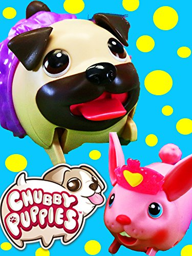 CHUBBY BUNNY New Friend of Chubby Puppies ❤ Hops at Playground Playset by DisneyCarToys