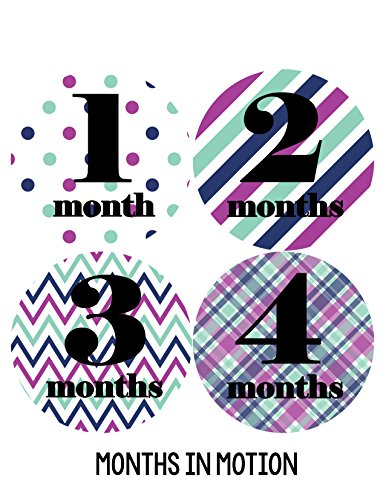 Months in Motion 092 Monthly Baby Stickers Baby Girl Month 1-12 Milestone Age - 1