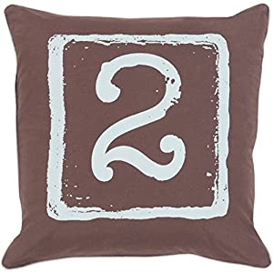 Light Blue And Brown Decorative Pillows : Amazon.com: 20