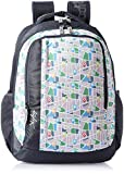 #9: Skybags Helix 29.5 Ltrs Grey Casual Backpack (BPHELFS3GRY)