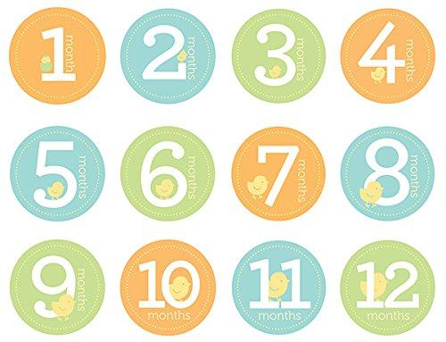 Pearhead Baby Milestone Stickers, Multi