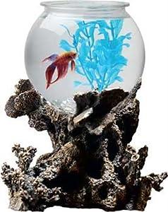 Aquarius OT1001 Betta Treasures 1-Gallon Coral Aquarium