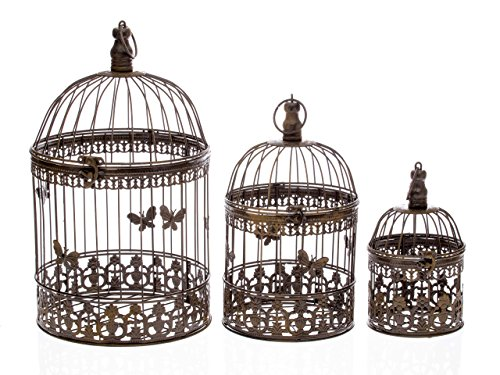3-Vogelkfige-Vogel-Kfig-Deko-Antik-Stil-Metall-braun-bird-cage-Dekokfig