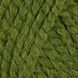 Lion Brand Wool-Ease Thick & Quick Yarn (131) Grass By The Each