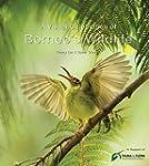 A Visual Celebration of Borneo's Wild...