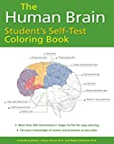img - for The Human Brain Student's Self-Test Coloring Book book / textbook / text book