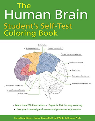 The Human Brain Students Self Test Coloring Book Pdf