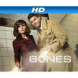 Bones Season 7 [HD]