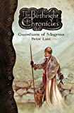 Guardians of Magessa (The Birthright Chronicles Book 1)