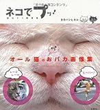 ネコでプッ! 面白ネコ画像集