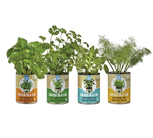 back-to-the-roots-garden-in-a-can-grow-organic-herbs-variety-pack-basil-cilantro-dill-sage-4-count