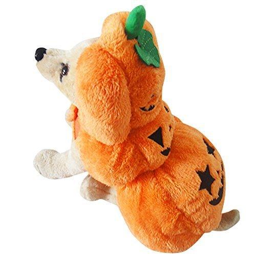 Rayfun ペットウェア ハロウィン Halloween カボチャ 犬 猫 オレンジ 仮装 衣装 コスチューム 7224 (M)