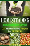 Homesteading: Homesteading For Survival: Homesteading Projects For Preppers (Homesteading Survival, Homesteading For Beginners, Homesteading Essentials, ... Survival, Urban Survival, Homesteading)