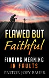 img - for Flawed but Faithful Finding Meaning in our Faults. book / textbook / text book