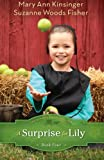 img - for A Surprise for Lily (The Adventures of Lily Lapp) book / textbook / text book
