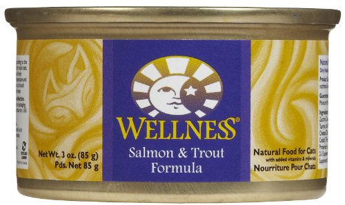 Wellness Complete Health Salmon & Trout - 24 X 3 Oz