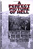 img - for A Perfect Picture of Hell: Eyewitness Accounts by Civil War Prisoners from the 12th Iowa book / textbook / text book