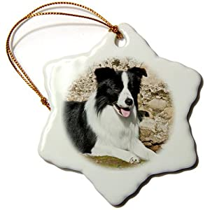 3dRose orn_88758_1 A Border Collie Dog Next to a Rock Wall-US05 ZMU0025-Zandria Muench Beraldo-Snowflake Ornament, Porcelain, 3-Inch