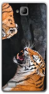 The Racoon Lean the tiger hard plastic printed back case / cover for Huawei Honor 3C