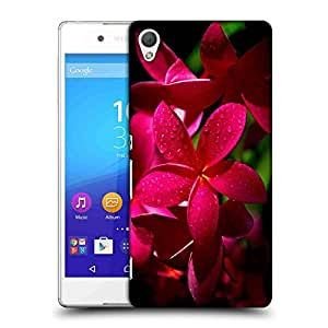 Snoogg Red Flower Designer Protective Back Case Cover For SONY Z4 COMPACT