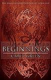 Dragon Slayer: Beginnings (The Dragon Slayer Chronicles Book 1)
