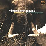 echange, troc The Brand New Heavies - Dream Come True (Best Of)