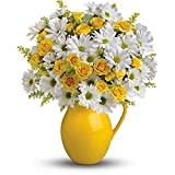 Teleflora's Sunny Day Pitcher of Daisies - Thank You Flowers