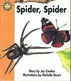 Spider, Spider (Sunshine Fiction, Level 1, Set E)