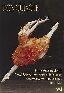 Don Quixote Ballet [DVD] [2008]