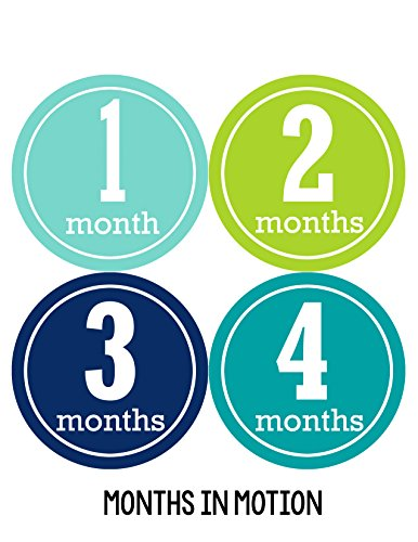 Months in Motion 165 Monthly Baby Stickers Baby Boy Month 1-12 Milestone Sticker
