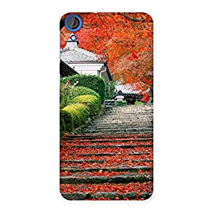 Stairs Garden Multicolor Back Case Cover for HTC Desire 820