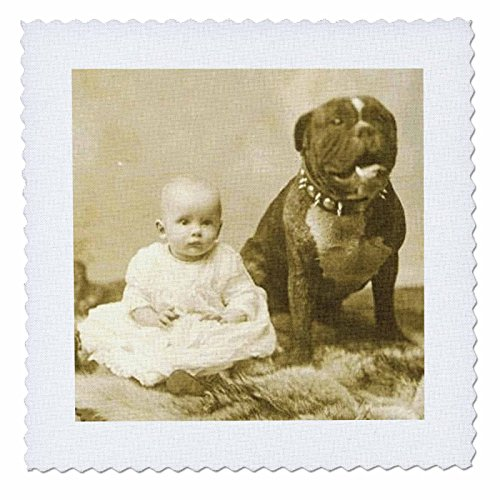 3dRose qs_49350_4 Pit Bull with Baby 1892-Quilt Square, 12 by 12-Inch (Pitbull Quilts compare prices)